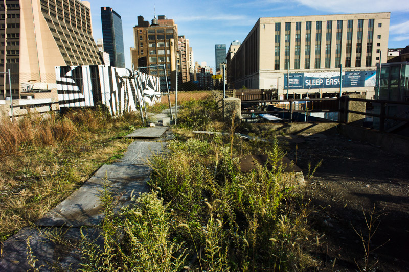 Near the north end of the High Line's second section at 30th Street.